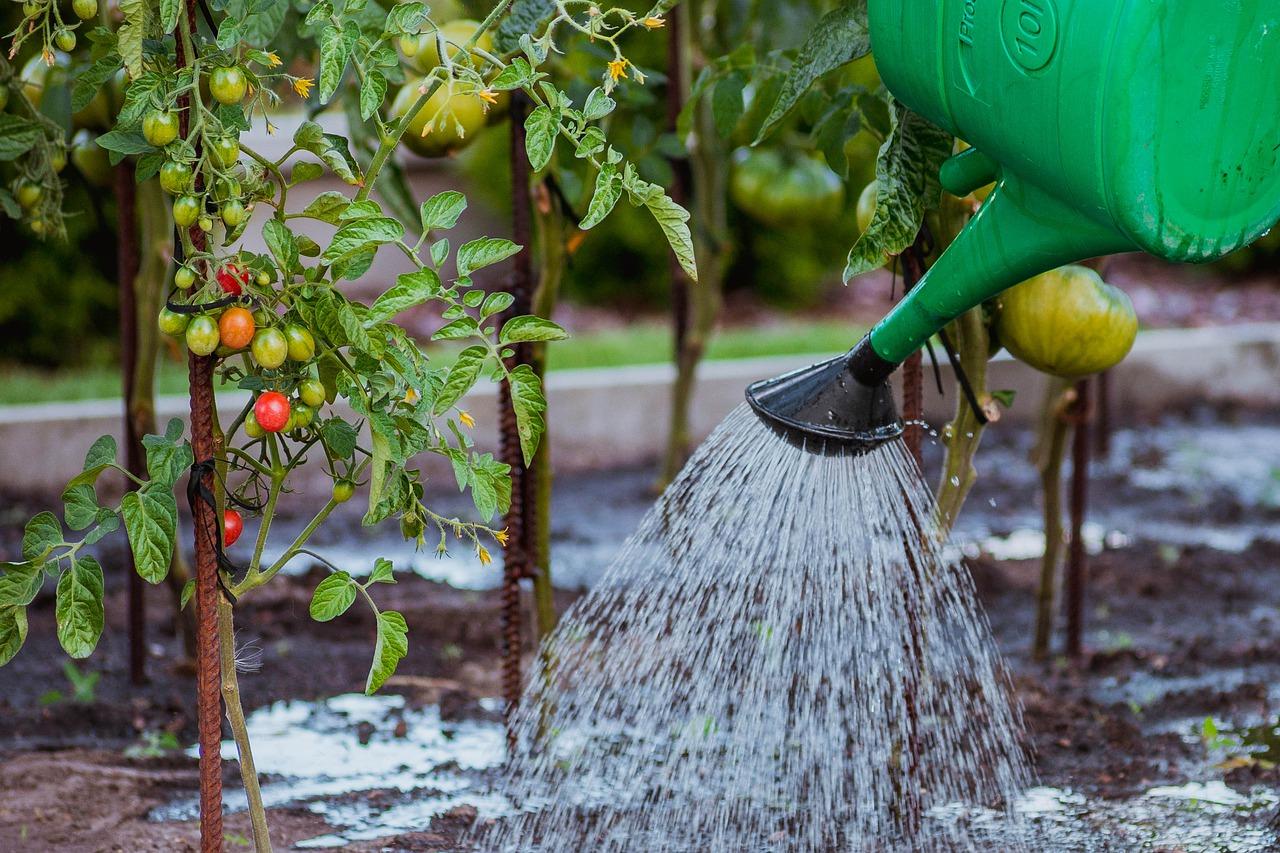 Met een nevelsproeier heb je altijd een frisse tuin